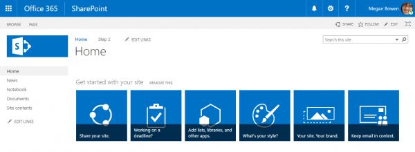 Screenshot of a standard SharePoint team site